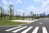 体育公园路生态停车场